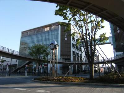 2010.5.02 つつじの名所 青梅・塩船観音寺と薬王寺 050.jpg
