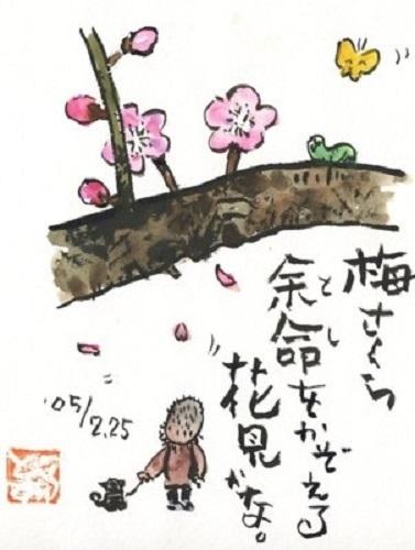 梅さくら.jpg