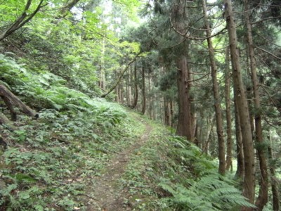 第36回奥の細道を歩く あつみ温泉~村上 2008.04~06 066.jpg