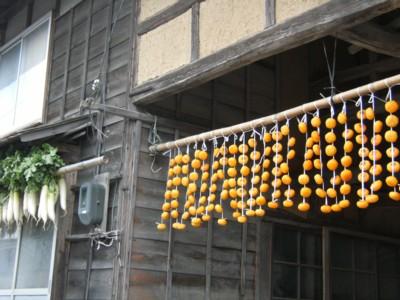 第38回奥の細道を歩く 新潟~岩室・弥彦 2008年11月26~28日 061.jpg