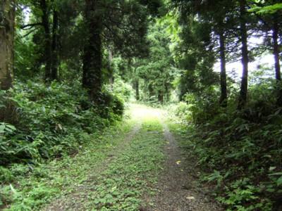 第45回奥の細道を歩く 高岡~倶利伽羅峠~金沢・東山 2009年8月1~3日 001.jpg