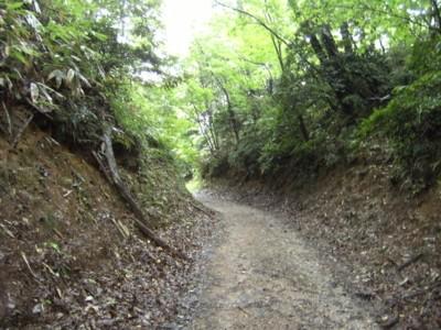 第45回奥の細道を歩く 高岡~倶利伽羅峠~金沢・東山 2009年8月1~3日 064.jpg