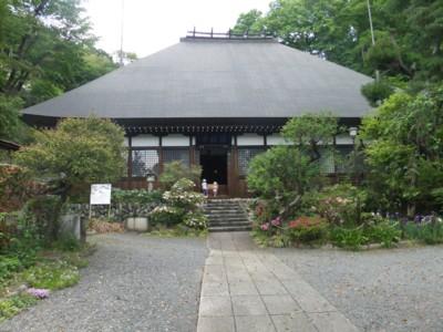 青梅・愛宕神社と海禅寺のつつじ 2011.5.8 039.jpg