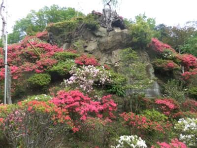 青梅・愛宕神社と海禅寺のつつじ 2011.5.8 044.jpg