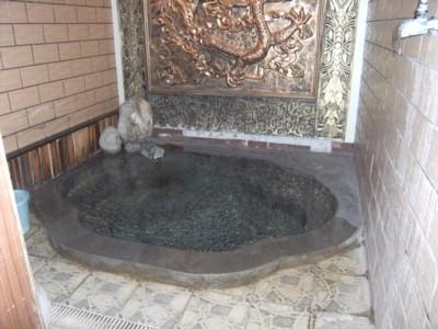 2008.12.28~01 北京・西安温泉入浴・観光 119.jpg
