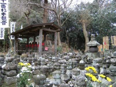 2010.2.09 湘南の温泉めぐりと鎌倉・報国寺、杉本寺を訪ねる! 095.jpg