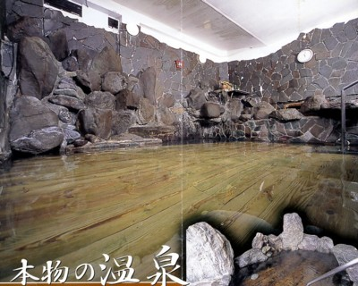 かくし湯大岩風呂(宿のパンフレット).jpg