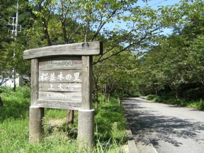 第36回奥の細道を歩く あつみ温泉~村上 2008.04~06 055.jpg