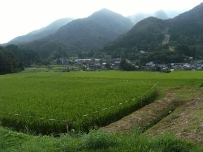 第36回奥の細道を歩く あつみ温泉~村上 2008.04~06 076.jpg