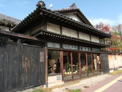 第38回奥の細道を歩く 新潟~岩室・弥彦 2008年11月26~28日 042.jpg