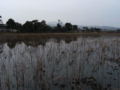 第41回奥の細道を歩く 米山~上越~鵜の浜温泉~名立 2009年2月12~14日 111.jpg