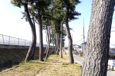 第8回甲州街道を歩く 勝沼宿~石和~柳町(甲府)宿 2012.2.19 037.jpg