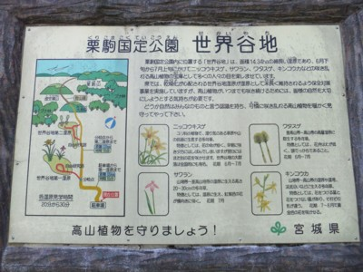 雲上の花園「月山・鳥海山」みちのく神秘の秘境 2012.8.14~16 013.jpg