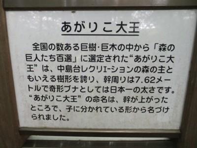 雲上の花園「月山・鳥海山」みちのく神秘の秘境 2012.8.14~16 125.jpg