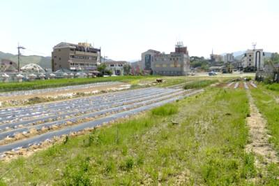 韓国・釜山近郊の温泉を訪ねて! 2012.4.27~30 163.jpg