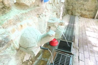 韓国・釜山近郊の温泉を訪ねて! 2012.4.27~30 171.jpg